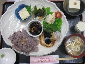 ゆばと豆腐のハンバーグ
