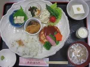 豆腐ハンバーグのドミグラスソース