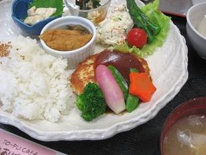 豆腐ハンバーグのドミグラスソース2