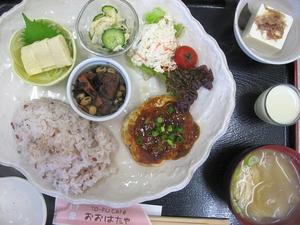 豆腐ハンバーグ〜麻婆ソースがけ〜